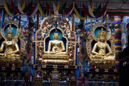 Coorg_20150228_11-45_01_01