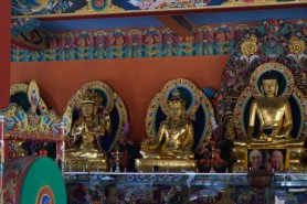 Coorg_20150228_12-02_02_01