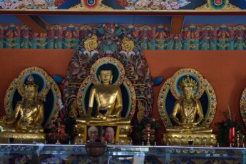 Coorg_20150228_12-02_03