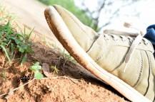Bug beneath the shoe